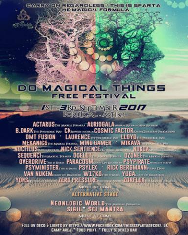 DMT Festival Flyer